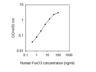 Human FoxO3/FKHRL1 ELISA