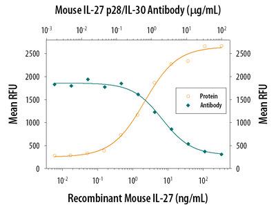 IL-27 p28 / IL-30 Antibody