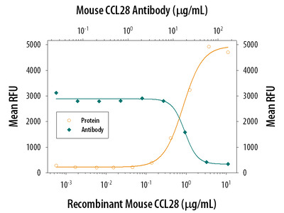 CCL28 Antibody