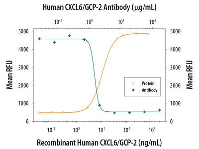 Human CXCL6 / GCP-2 Antibody