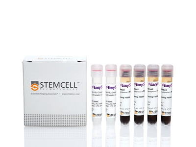 EasySep™ Direct HLA Crossmatch B Cell Isolation Kit for RoboSep™