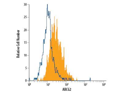 ABCG2 PE-conjugated Antibody