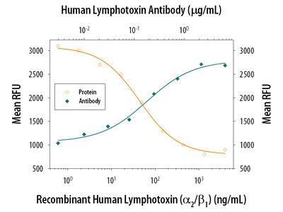 Lymphotoxin Antibody