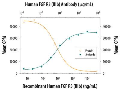 FGFR3 (IIIb) Antibody