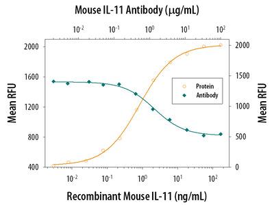 IL-11 Antibody