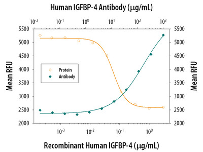 IGFBP-4 Antibody