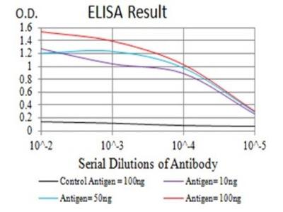 Mouse Monoclonal mGluR1 Antibody