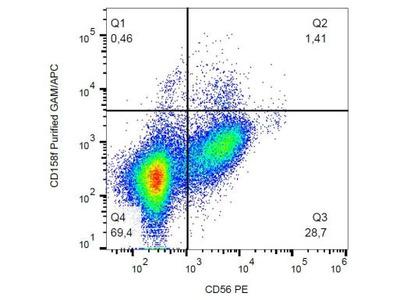 Mouse Monoclonal KIR2DL5 / CD158f Antibody