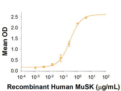 MuSK Fc Chimera Protein