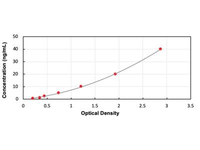Interferon Alpha/Beta Receptor 2 ELISA Kit