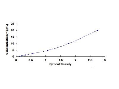 Anti-G-Elongation Factor, Mitochondrial 1 Antibody