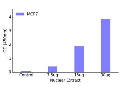 NR2F6 TFact DNA-Binding ELISA Kit