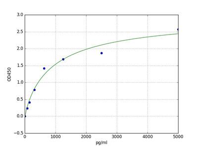 Mouse Bnip3 (BCL2/adenovirus E1B 19 kDa protein-interacting protein 3) ELISA Kit