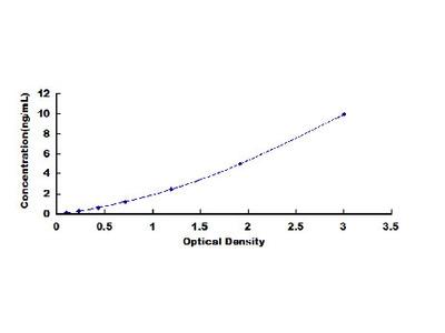 Anti-Trefoil Factor 1 Antibody