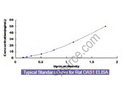 Rat 2',5'-Oligoadenylate Synthetase 1 (OAS1) ELISA Kit