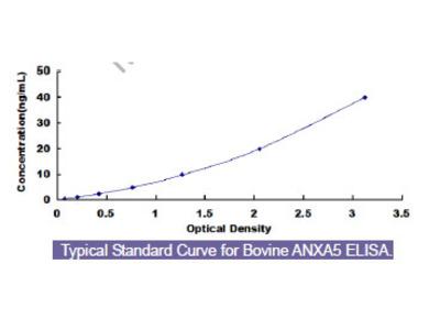 Bovine Annexin A5 (ANXA5) ELISA Kit