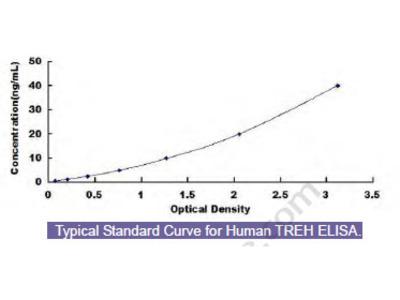 Human Trehalase (TREH) ELISA Kit