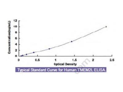 Human Transmembrane Protein 2 Like Protein (TMEM2L) ELISA Kit
