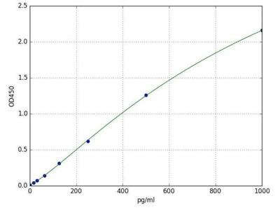 Folylpolyglutamate Synthase (FPGS) (Human) ELISA Kit
