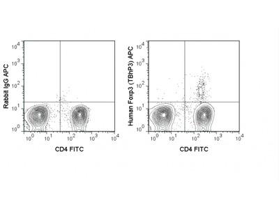 APC Anti-Human FoxP3 Transcription Factor Staining Kit