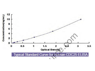 Human Cell Division Cycle Protein 25 (CDC25) ELISA Kit