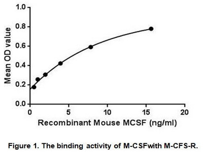 Active Colony Stimulating Factor 1, Macrophage (MCSF)
