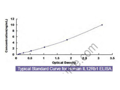 Human Interleukin 12 Receptor Beta 1 (IL12Rb1) ELISA Kit