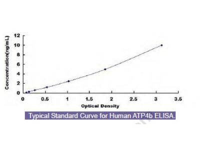 Human ATPase, H+/K+ Exchanging Beta Polypeptide (ATP4b) ELISA Kit