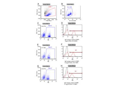 Anti-CD3 epsilon [UCHT1]