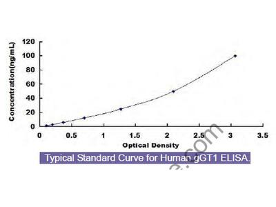 Human Gamma-Glutamyltransferase 1 (gGT1) ELISA Kit