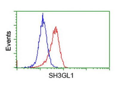 Mouse monoclonal SH3GL1 antibody