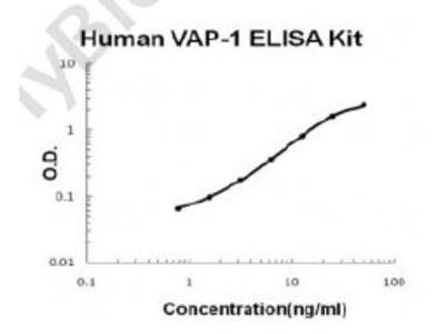Human VAP-1/AOC3 PicoKine ELISA Kit