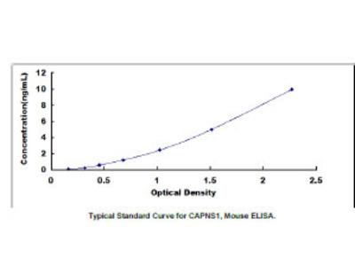 Calpain, Small Subunit 1 (CAPNS1) ELISA Kit