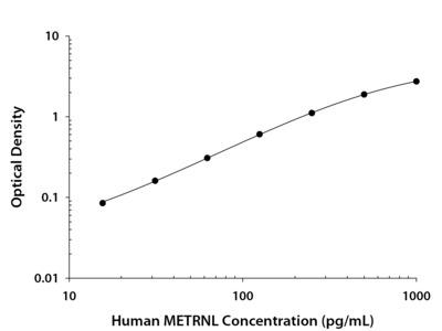 Meteorin-like /METRNL Antibody