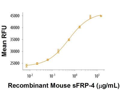 sFRP-4 Protein