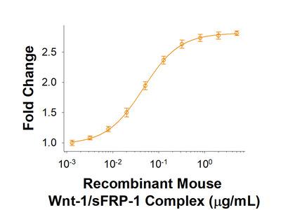 / sFRP-1 Complex Protein