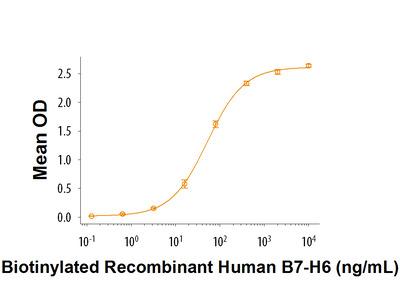 B7-H6 Fc Chimera Biotinylated Protein