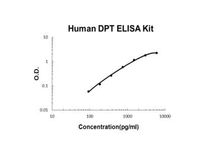 Human Dermatopontin/DPT ELISA Kit PicoKine