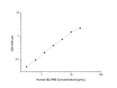 Biliverdin Reductase B / BLVRB ELISA Kit