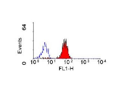 Anti-CD32 antibody [AT10] (Biotin)