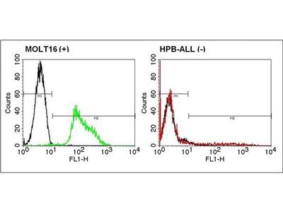 Anti-TCR V alpha 2 antibody [F1] (FITC)