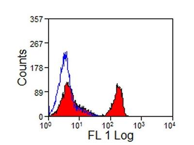 Anti-CD4 antibody [CVS4]