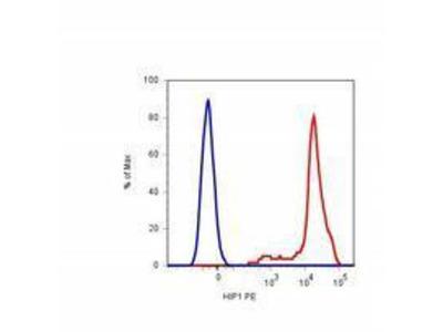 Anti-CD42b antibody [HIP1] (PE)