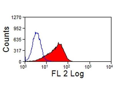 Anti-TIM-3 antibody [RMT3-23] (PE)