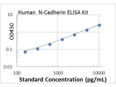 Human N-Cadherin ELISA Kit