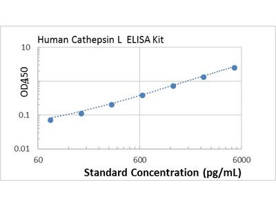 Human Cathepsin L ELISA kit