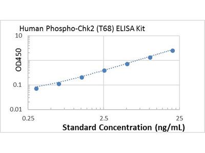 Human Phospho-Chk2 (T68) ELISA kit