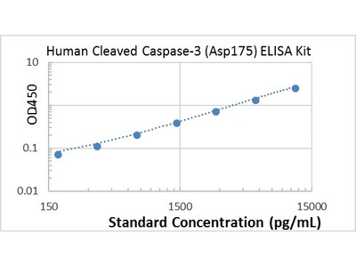 Human Cleaved Caspase-3 (Asp175) ELISA kit