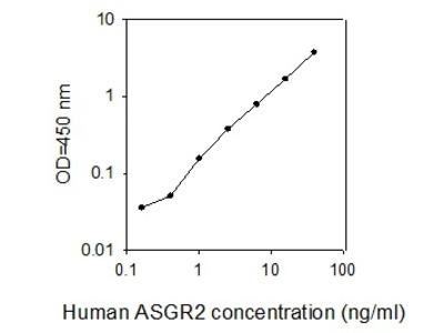 Human ASGP-R 2/ASGR2 ELISA