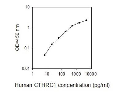 Human CTHRC1 ELISA